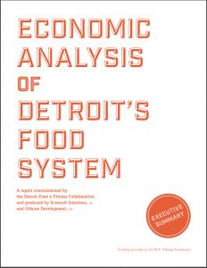 Detroit Economic Analysis Cover