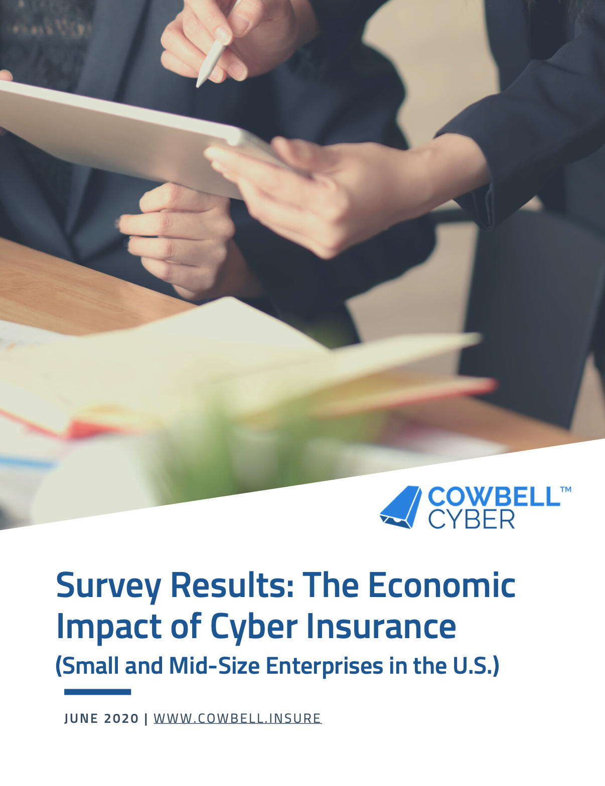 Cowbell Cyber Economic Impact of Cyber Insurance