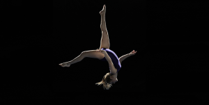 Workflow Quarterly_Agility gymnast